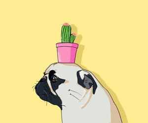 wallpaper, pug, and background image