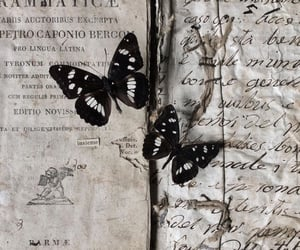 black, books, and butterflies image