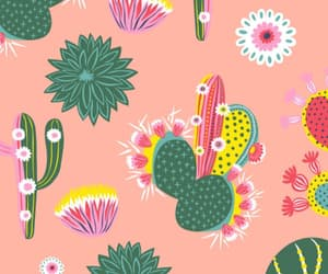 cacti, cactus, and pattern image