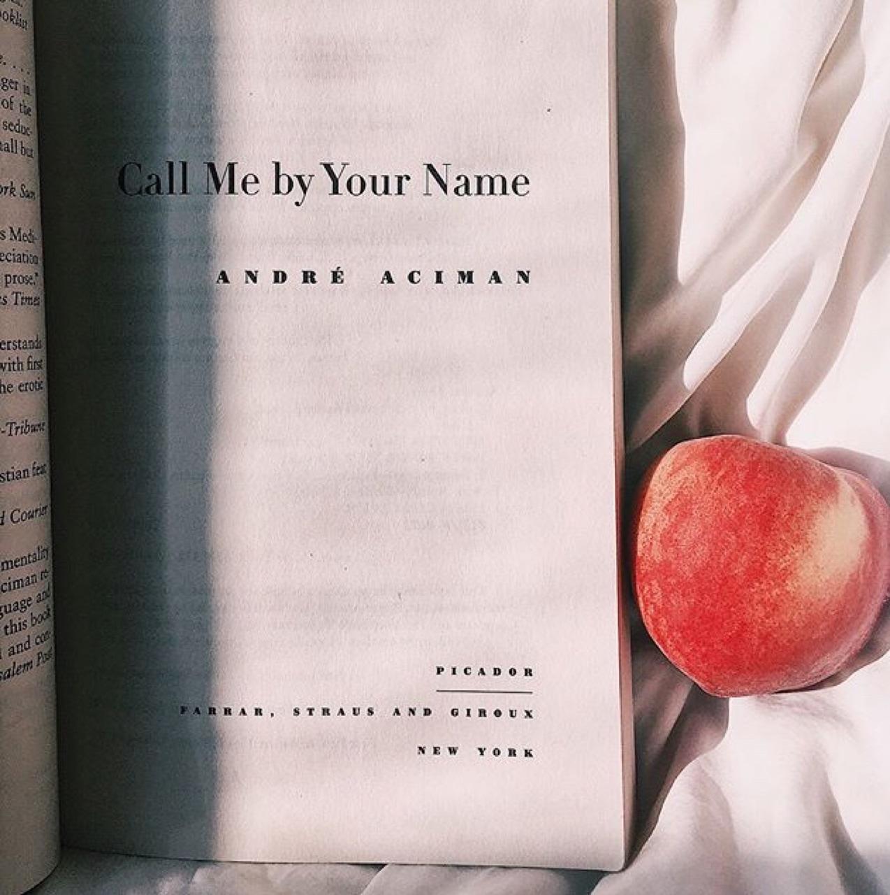 bibliophile, book, and peach image