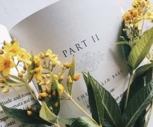 cultura, libro, and lectura image