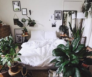 bedroom, plants, and décoration image