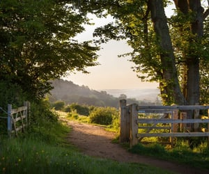 nature, green, and gate image