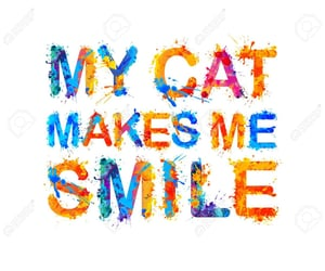 cats, happy, and smile image