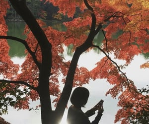 aesthetic, asian, and autumn image