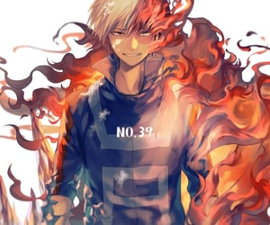 mha, bnha, and shoto todoroki image