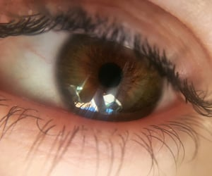 brown eyes, eyes, and green eyes image