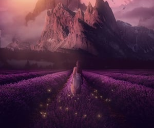 fantastic, flowers, and purple image