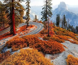 autumn, highway, and places image