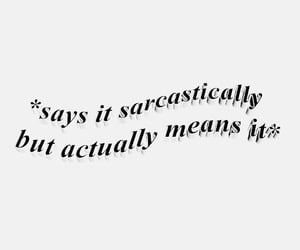 funny, sarcasm, and true image