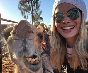 actress, australia, and kangaroo image