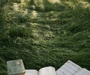 book, nature, and grass image
