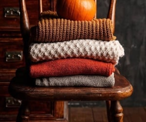 pumpkin, autumn, and sweater image