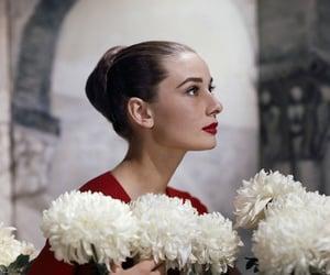 audrey hepburn, girl, and pretty image
