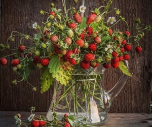 country living, strawberry plants, and taking some cuttings image
