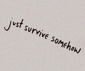 quotes, aesthetic, and survive image