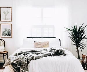aesthetic, decoration, and furniture image