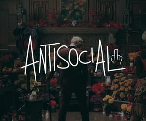 antisocial, flowers, and ed sheeran image