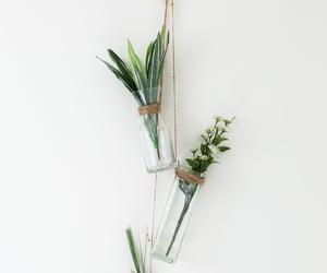 aesthetic, green, and boho image
