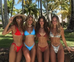 girls, tropical, and friends image