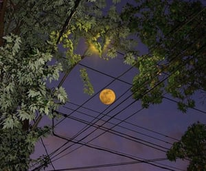 aesthetic, outside, and moon image