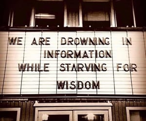 quotes, information, and wisdom image