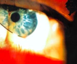 blue eyes image