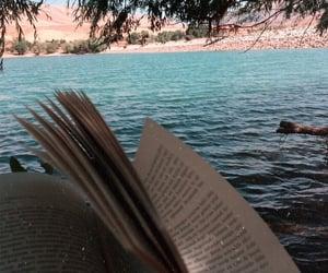 beach, book, and novel image