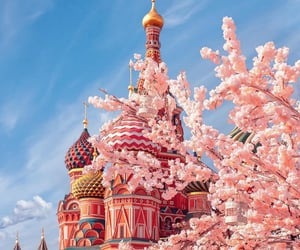 moscow, russia, and flowers image