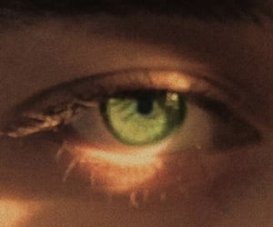 eyes, aesthetic, and brown image