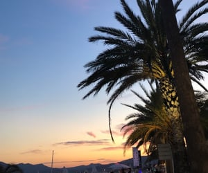 cannes, france, and palmtrees image