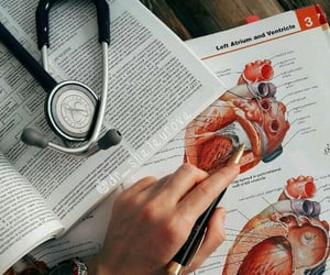 study, college, and heart image