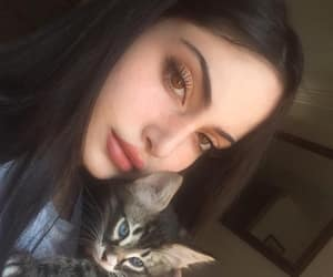 Algeria, beauty, and cats image