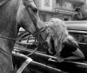 black & white, brigitte bardot, and horse image