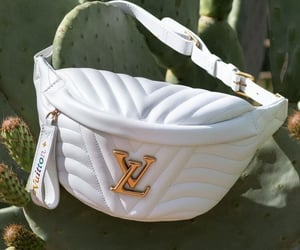 fashion, Louis Vuitton, and white image