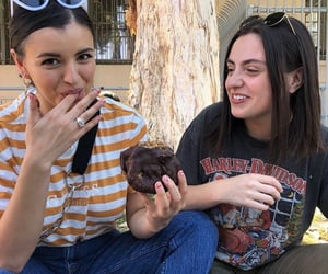 donut, girls, and icon image