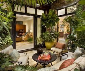 home, vivarium, and house image