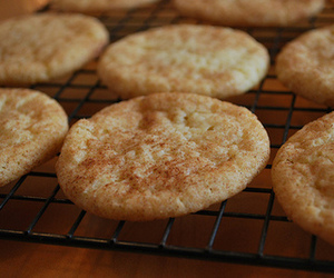chewy, sugar cookie, and Cinnamon image