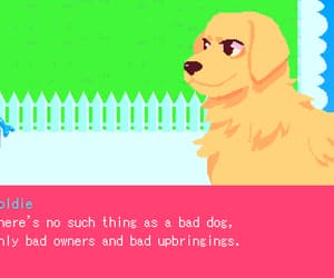 dogs, twitter, and game image