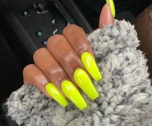 nails, fur, and green image