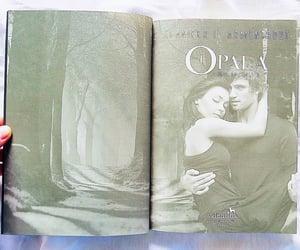 books, livros, and opal image