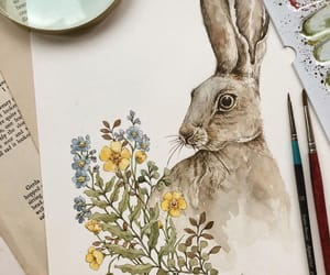 botany, hare, and rabbit image