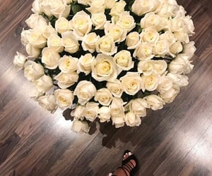 white, flowers, and rose image