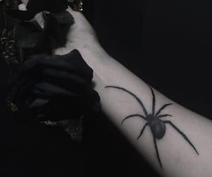 black widow, grunge, and spider image