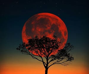 inspiration, moon, and nature image