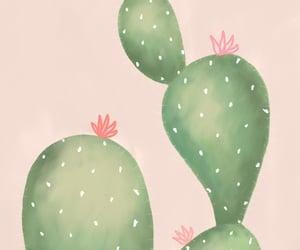 cacti, cactus, and design image