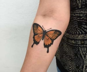 butterfly and tattoo image