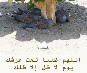 دُعَاءْ, الدعاء, and ربّي image