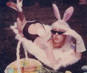 boy, bunnysuit, and costume image