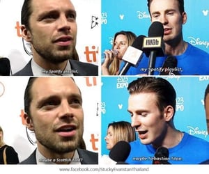 bucky, cast, and Marvel image
